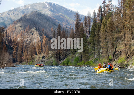 Rafting the Middle Fork of the Salmon River, ID. - Stock Photo
