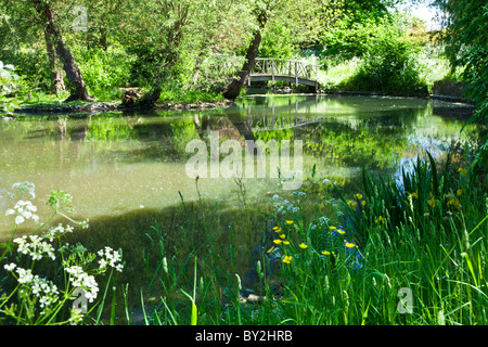 A large ornamental pond or small lake with a rustic wooden bridge in an English country garden in summer - Stock Photo