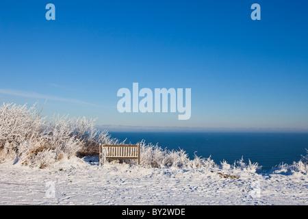 Snow covered scene, winter 2010 - Stock Photo