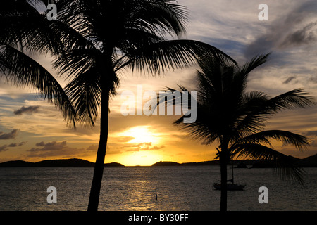 A beautiful Caribbean sunset seen from St. John and overlooking St. Thomas in the US Virgin Islands framed by palm - Stock Photo