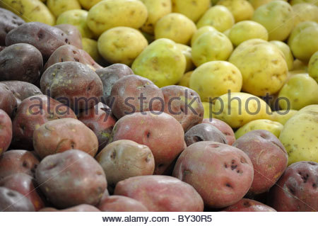 Yellow and red potatoes on a grocery store - Stock Photo