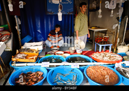 Fresh seafood in a market near puerto galera in sabang for Fresh fish market near me