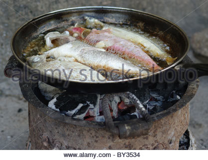 Cooking fish North Mozambique Africa - Stock Photo