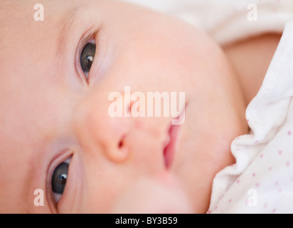 USA, New Jersey, Jersey City, baby girl (2-5 months) portrait - Stock Photo