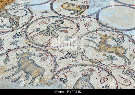 Ancient discovered mosaic art in Caesarea on coast of Mediterranean sea in Israel - Stock Photo