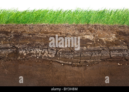 Cross section of green grass and underground soil layers beneath - Stock Photo
