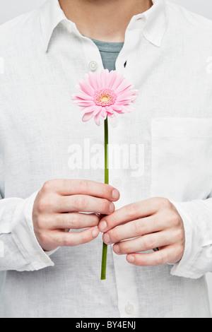 Man holding a gerbera - Stock Photo