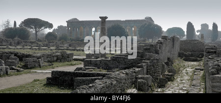 Evening landscape with the Temple of Neptune, Paestum, near Naples, Italy - Stock Photo