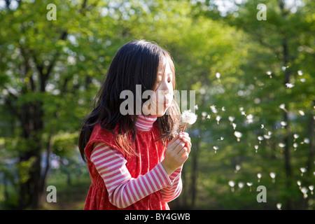 Girl Blowing Dandelion Seeds - Stock Photo