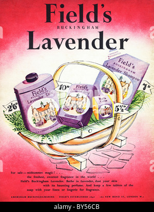 1950s full page colour advertisement in women's fashion magazine for Field's Buckingham Lavender toiletries - Stock Photo