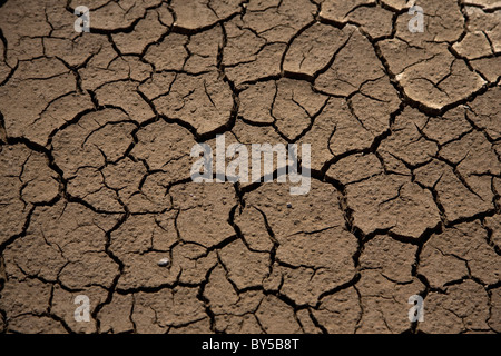 Cracked and dry desert ground high angle view stock photo detail of dry cracked ground stock photo sciox Images