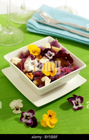 Red cabbage salad 'four seasons'. Recipe available. - Stock Photo