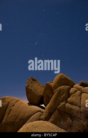 Moonlit landscape with starry night sky and the constellation orion at Joshua Tree National Park, California, USA. - Stock Photo