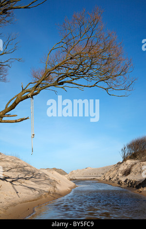 Tree with branches and a hanging rope over the sandy banks of a stream on the northern coast of Zealand, Denmark - Stock Photo