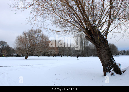 Walking dog in the snow, Hurst Meadows, Sadler's Ride, East Molesey, Surrey, England, Great Britain, United Kingdom, - Stock Photo