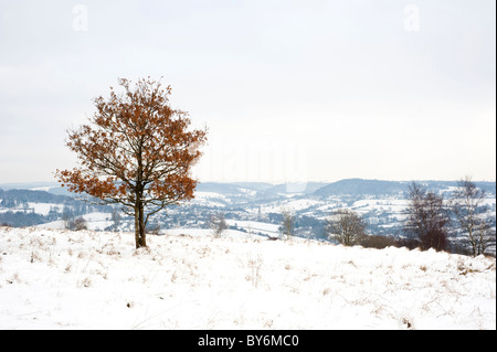 Snow covered view across the Painswick Valley near Edge, Gloucestershire, England, United Kingdom - Stock Photo