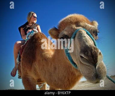 Tourist riding camel on Sahara desert excursion, Tunisia - Stock Photo