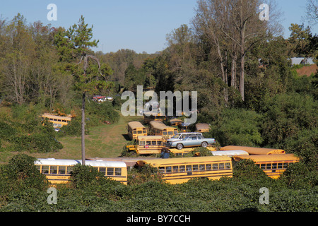 Georgia Raoul junkyard scrap yard salvage yard business vehicle car old school bus wrecked decommissioned dismantling - Stock Photo