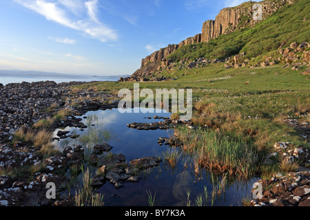 Pool and Cotton Grass eriophorum angustifolium Rubha Garbhaig Staffin Bay Trotternish Peninsula Isle of Skye Scotland - Stock Photo