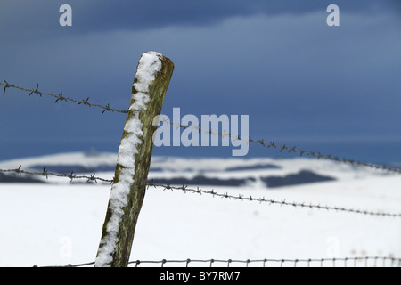 Driven snow stuck to a fence post on the South Downs National Park Near Eastbourne, East Sussex, England. - Stock Photo