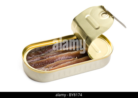 the anchovies fillets in tin can - Stock Photo