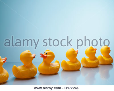 Rubber ducks in a row with one facing backwards - Stock Photo