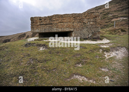 World War II defences at Cuckmere Haven, an area of flood plains in Sussex - Stock Photo
