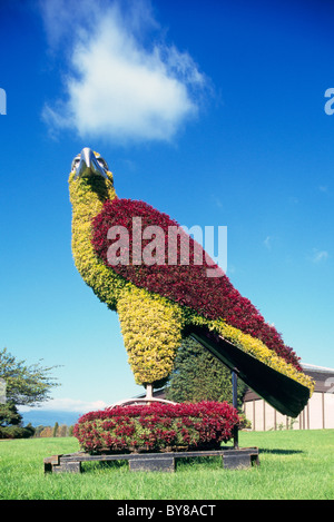 Topiary Eco Sculpture, Burnaby, BC, British Columbia, Canada - Public Art, Urban Artwork, Living Plants in Eagle - Stock Photo