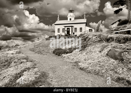 Sedums blooming at Battery Point lighthouse, California.  A sky has been added - Stock Photo