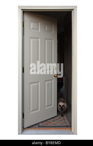 An open door with a cat walking out. - Stock Photo