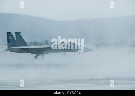 Jet fighter on runway with fog - Stock Photo