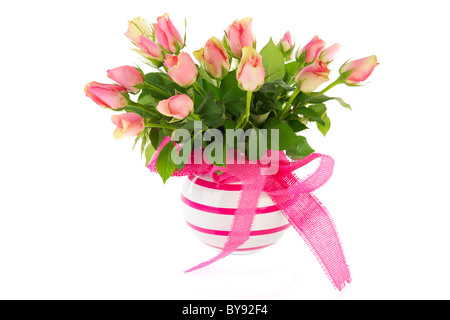 Bouquet pink roses in striped vase isolated over white - Stock Photo