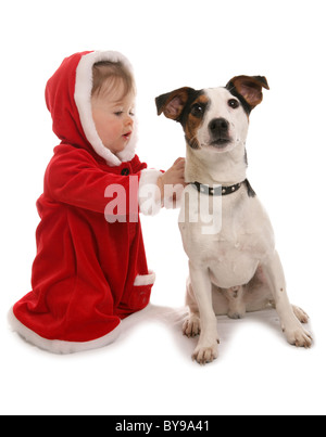 Toddler with pet dog Year old girl with Jack russell dog Studio - Stock Photo