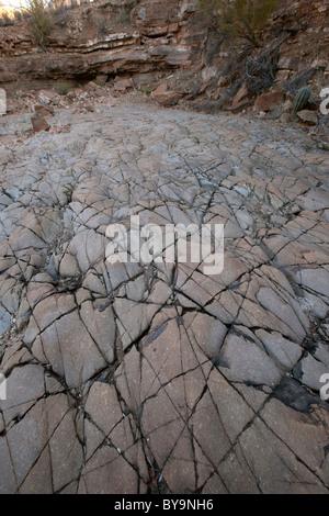 Ancient seabed, Tucson Mountains, Tucson, Arizona - Stock Photo