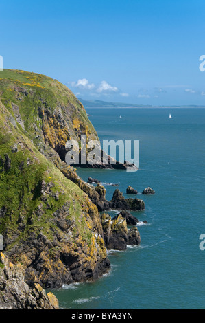 The cliffs at Balcary Galloway Coast on Solway Firth - Stock Photo