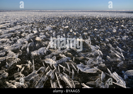 About over shallow water area of the Baltic Sea off Stein, Probstei, Ploen district, Schleswig-Holstein, Germany, - Stock Photo