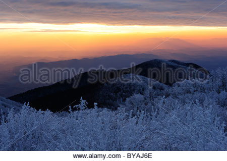 Winter mountain forest and beautiful sunset - Stock Photo