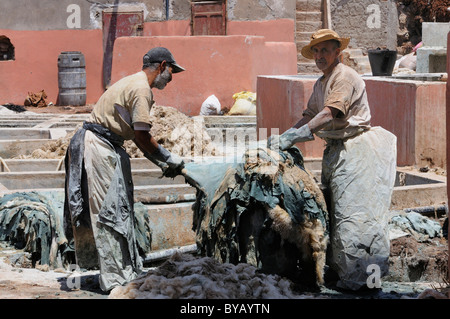 Workers tanning leather in the old tanners' souq, district of the tanners, Marrakech, Morocco, Africa - Stock Photo