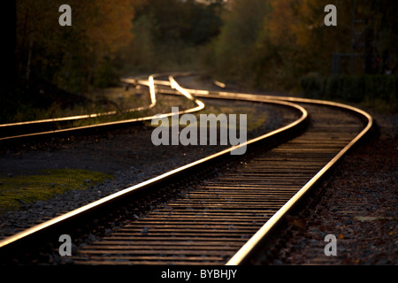 Disused railway track in Duisburg-Nord Landscape Park, Duisburg, Ruhr Area, North Rhine-Westphalia, Germany, Europe - Stock Photo