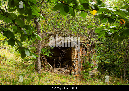 Old abandoned ruined barn in the forest - Stock Photo