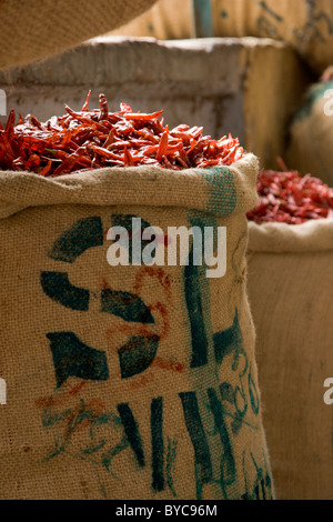 Bright red chillies stored in sacks - Stock Photo