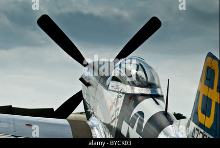 North American Aviation P-51 Mustang parked under a moody sky. - Stock Photo