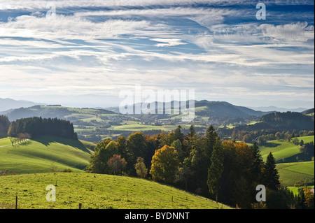 Landscape near St Maergen, South Black Forest, Baden-Wuerttemberg, Germany, Europe - Stock Photo
