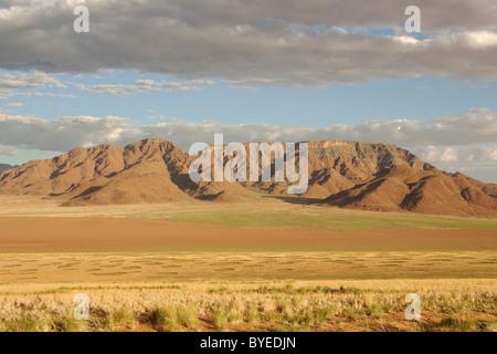 NamibRand Nature Reserve during the rainy season with green vegetation at the edge of the Namib Desert - Stock Photo