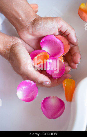 Close up of hands holding rose petals in spa - Stock Photo