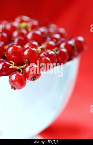 Fresh currants - Stock Photo