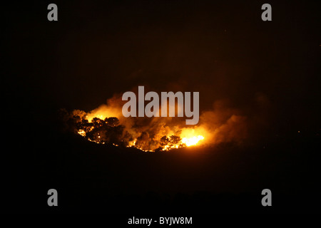 Flames and thick smoke rise from a massive forest fire on Mount Carmel in northern Israel. The fire consumed much - Stock Photo