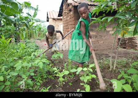 Two children work on their family's small farm in rural Masaka, Uganda, East Africa. - Stock Photo