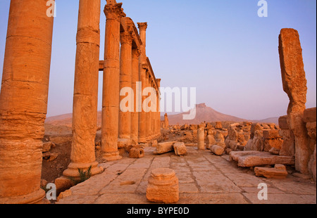 The Colonnaded Street and Arab Castle at Palmyra, Syria - Stock Photo