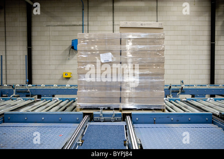 Wrapped pallet of cardboard boxes on conveyor belt in carpet tile factory - Stock Photo